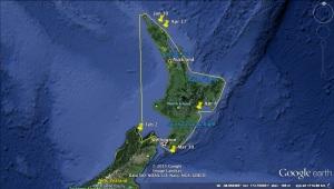 NZ Journey